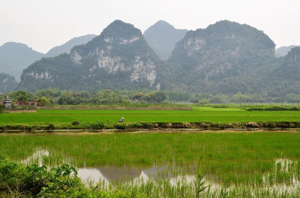 Tagesausflug Hanoi