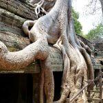 Kambodscha und die Sehenswürdigkeiten der Tempel von Angkor Wat