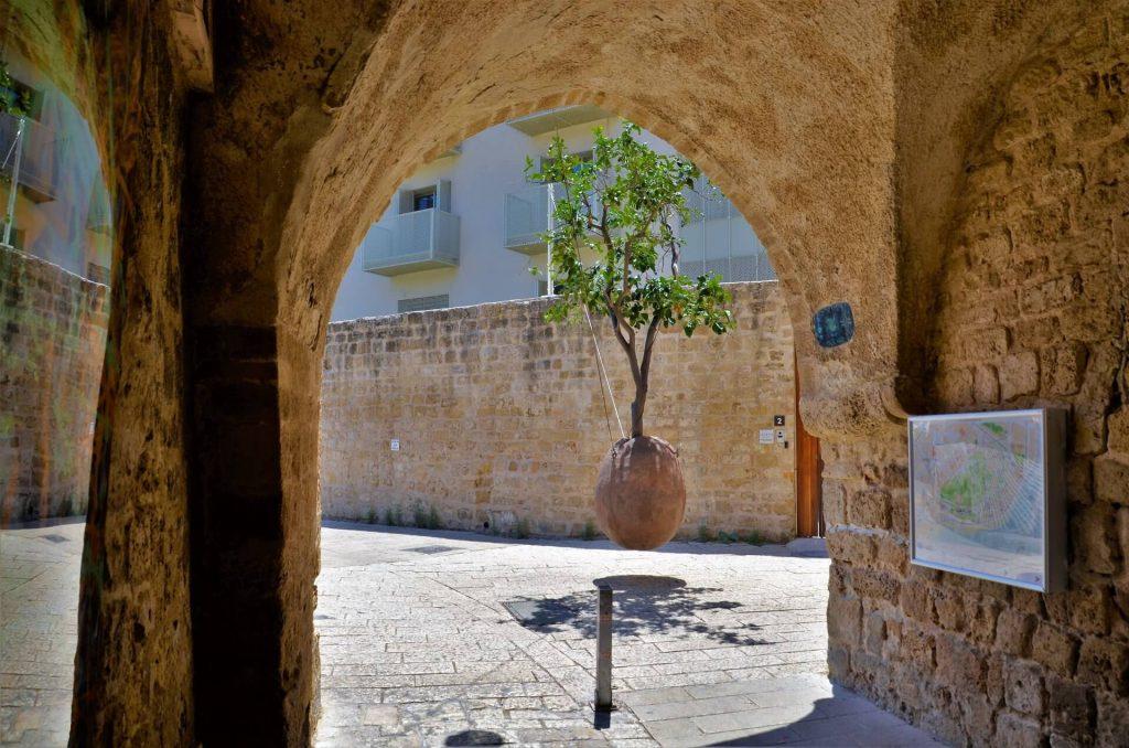 Der hängende Orangenbaum in Jaffa