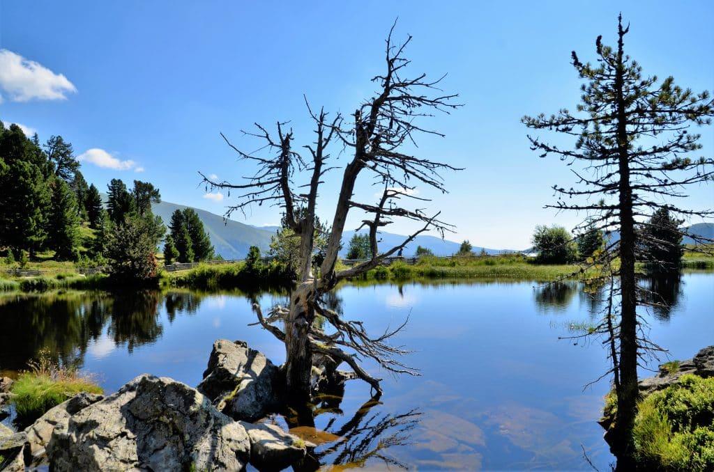 Wandern in Kärnten: Rundweg um den Windebensee