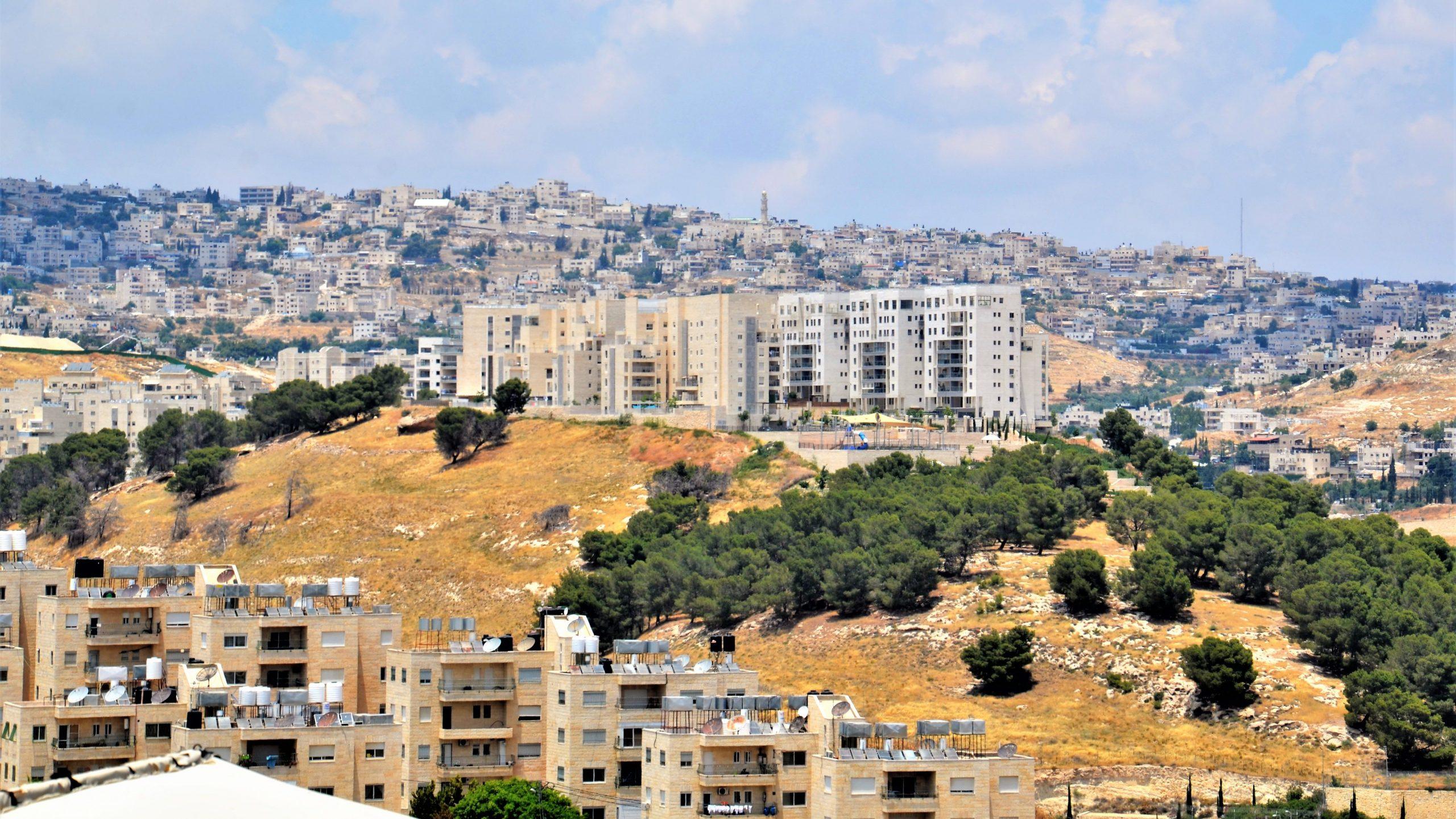 Hirtenfelder: Blick auf Betlehem